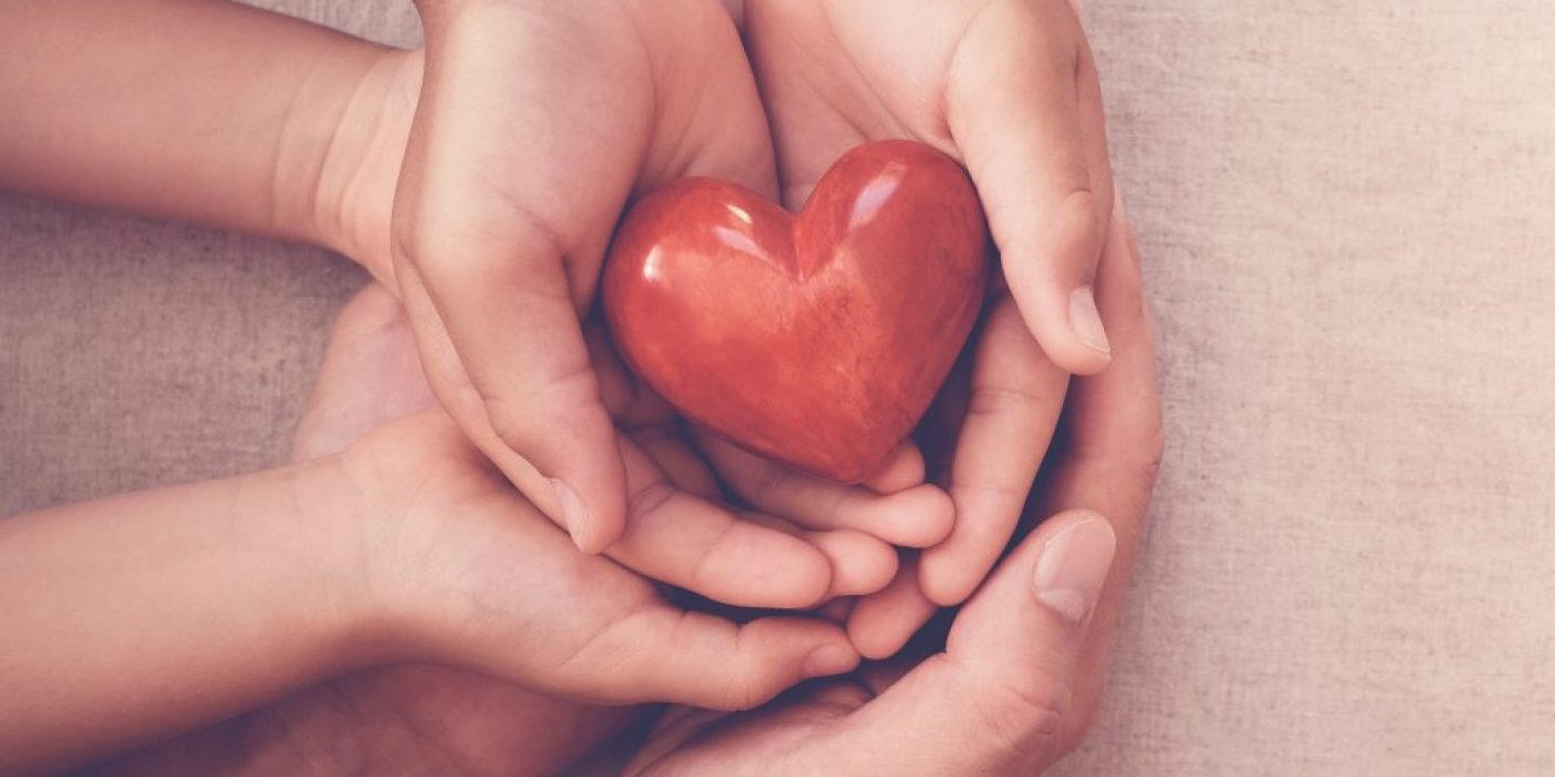 hands holding red heart, health insurance, organ donor day, charity giving , foster care concept